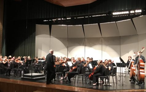Chamber Orchestra Concert photo gallery (Photos by Abby Alderson)