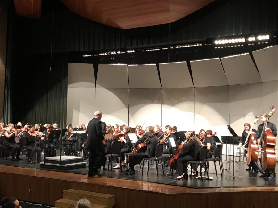 Chamber+Orchestra+performing+at+their+fall+concert.