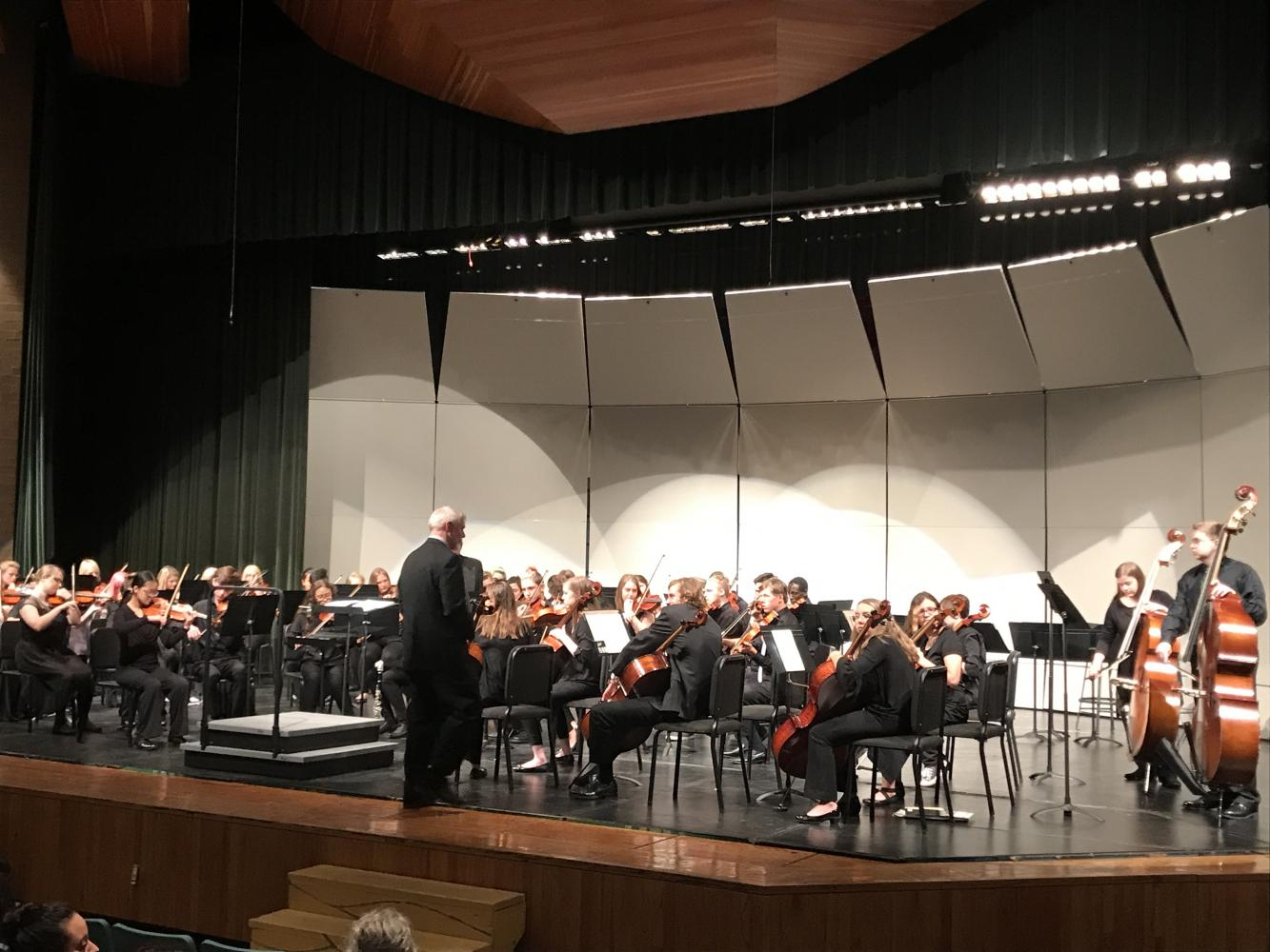 Chamber Orchestra performing at their fall concert.