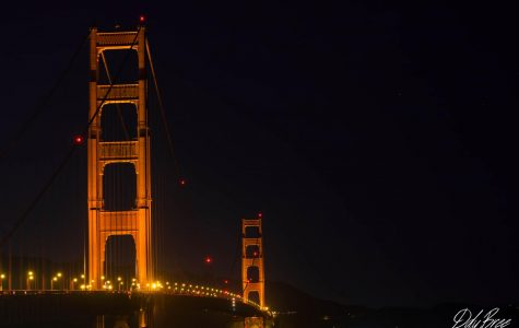 New places, new adventures (San Francisco photo gallery by Devon DuBree)