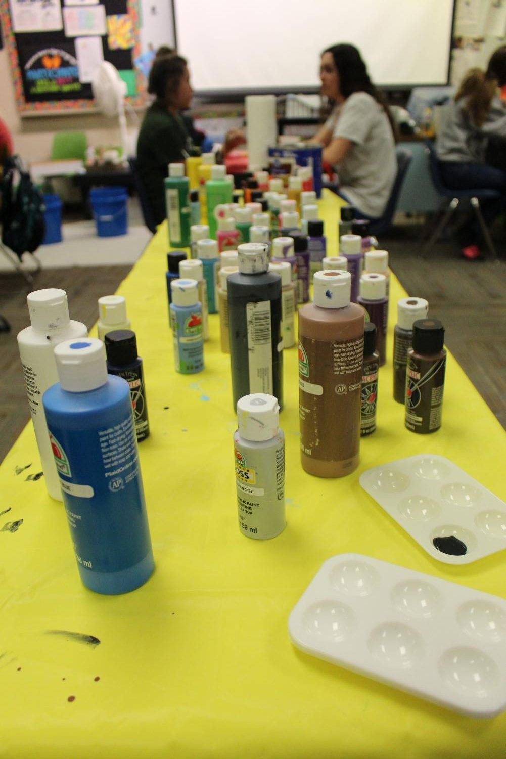 The+assortment+of+paints+the+ASL+students+have+too+choose+from.