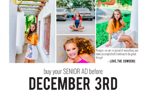 Black Friday, Cyber Monday special for Senior Ads