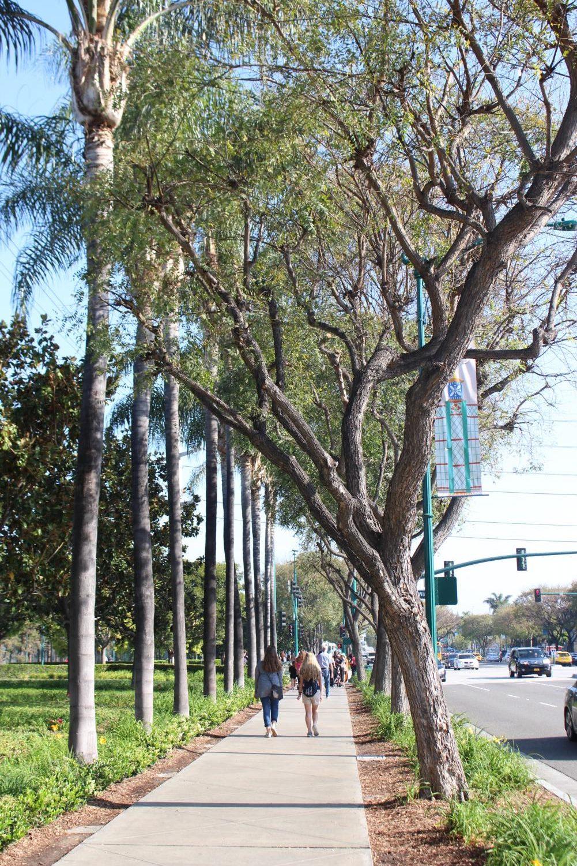 Journalism+Education+Association+Anaheim%2C+CA