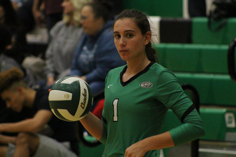 Senior+Sydney+Nilles+gets+ready+to+serve+the+ball