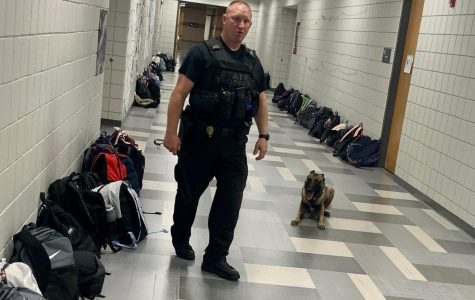 K-9 units search DHS; no drugs found