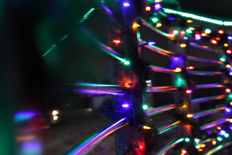 Christmas+tree+lighting+wows