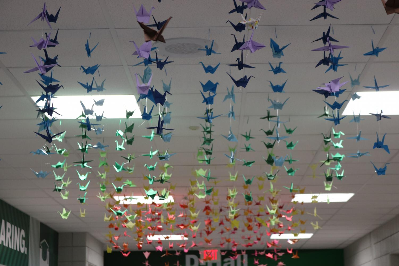 Rainbow+Cranes+in+D-Hall+%28Photos+by+Zara+Thomas%29