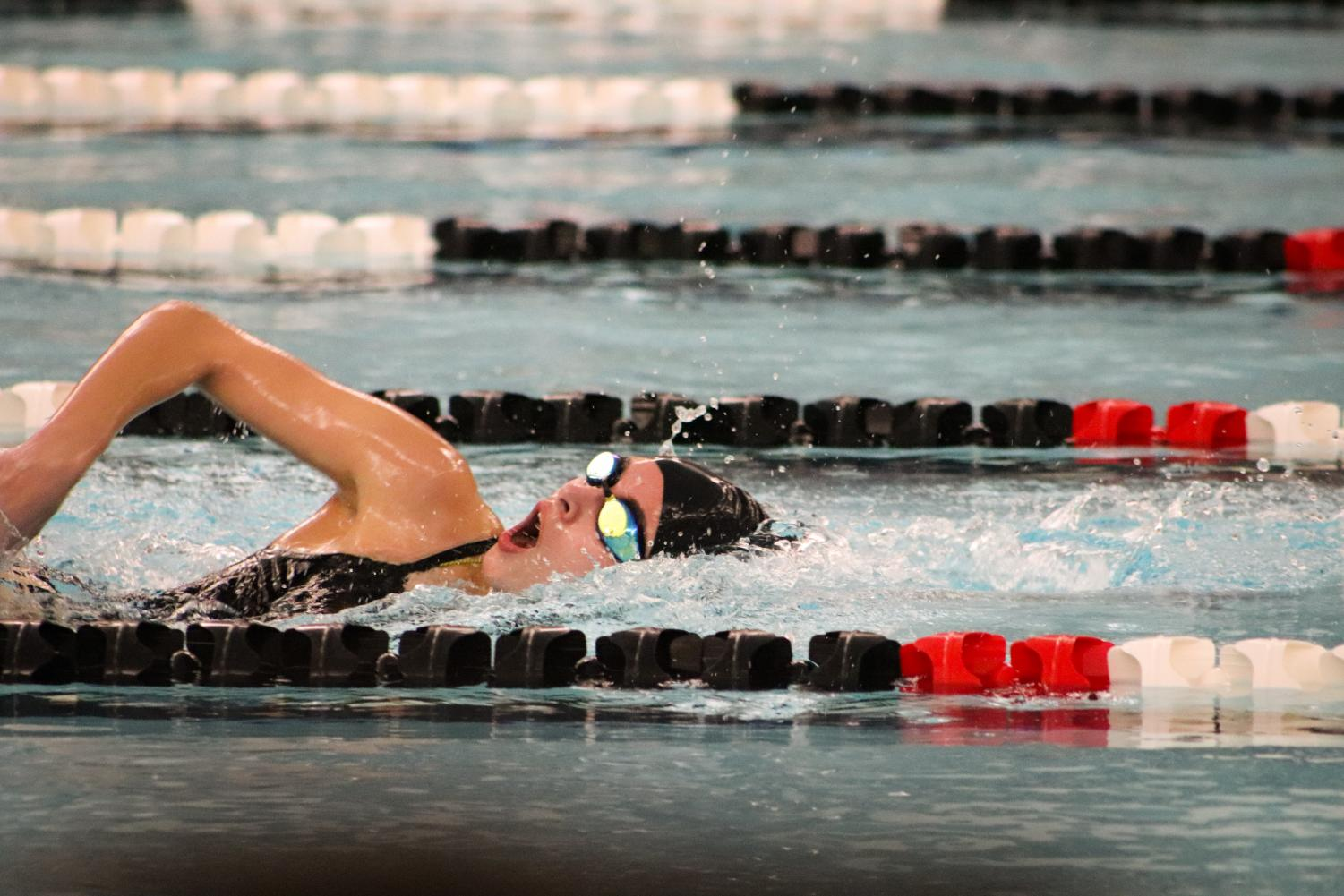Girls+Swim+and+Dive+Meet+%28Photos+by+Reese+Cowden%29