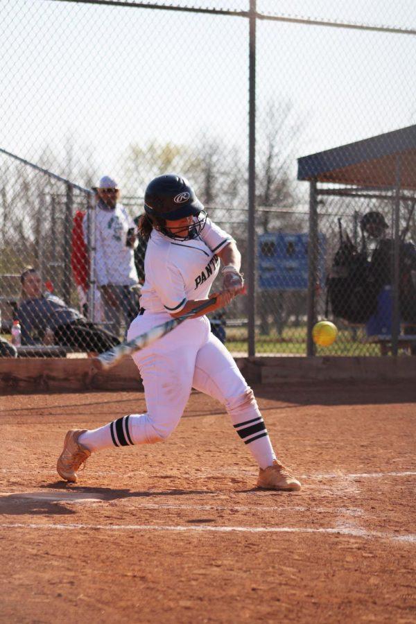 Varsity Panther Softball (Photos By Josie Nussbaum)