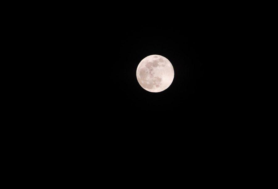 Pink+moon+rises+tonight