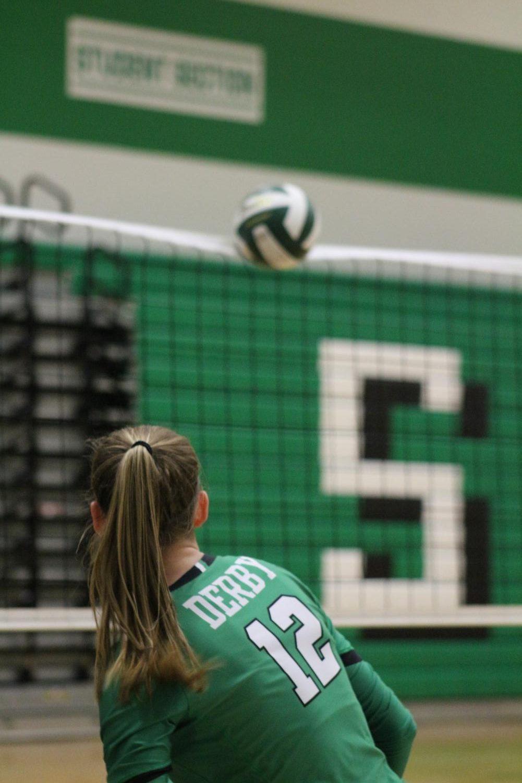 Sr.+Night+Volleyball+%28Photos+by+Lolaina+Gutierrez%29